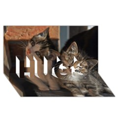 Cute Kitties Hugs 3d Greeting Card (8x4)