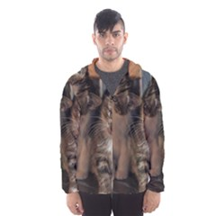 CUTE KITTIES Hooded Wind Breaker (Men)