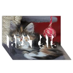 Comfy Kitty Best Sis 3d Greeting Card (8x4)