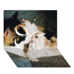 Calico Cat And White Kitty Clover 3d Greeting Card (7x5)