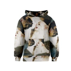 Calico Cat And White Kitty Kid s Pullover Hoodies