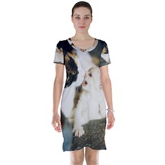 Calico Cat And White Kitty Short Sleeve Nightdresses