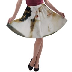 Calico Cat And White Kitty A Line Skater Skirt
