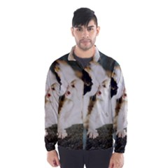 CALICO CAT AND WHITE KITTY Wind Breaker (Men)