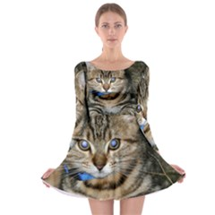 Blue Eyed Kitty Long Sleeve Skater Dress