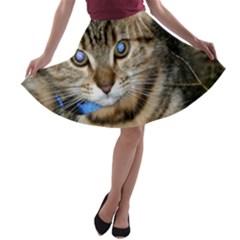 Blue Eyed Kitty A Line Skater Skirt