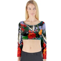 Butterfly Flowers 1 Long Sleeve Crop Top