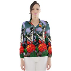 Butterfly Flowers 1 Wind Breaker (women)