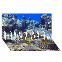 Sea Turtle Engaged 3d Greeting Card (8x4)