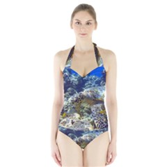SEA TURTLE Women s Halter One Piece Swimsuit