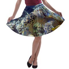 Sea Turtle A Line Skater Skirt