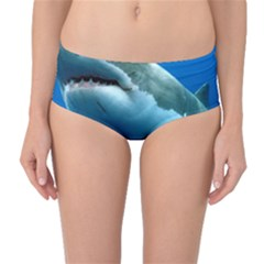 Great White Shark 3 Mid Waist Bikini Bottoms