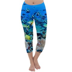 Fr Frigate Shoals Capri Winter Leggings