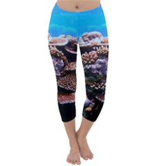 Coral Outcrop 2 Capri Winter Leggings