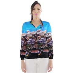 CORAL OUTCROP 2 Wind Breaker (Women)