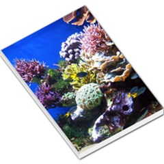 Coral Outcrop 1 Large Memo Pads