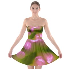 Pink And Green Circles Strapless Bra Top Dress