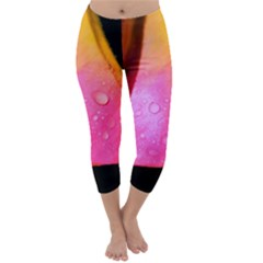 Pink Angel Capri Winter Leggings