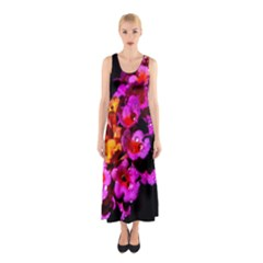 Lantanas Full Print Maxi Dress