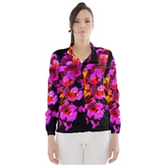 Lantanas Wind Breaker (Women)