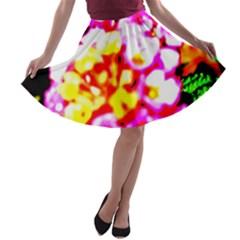 Dsc 01036 A-line Skater Skirt