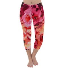 Dsc 0117666565 Capri Winter Leggings