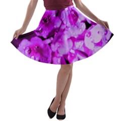 Dsc 01176665652 A-line Skater Skirt