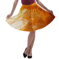 Sacles By Sandi A-line Skater Skirt