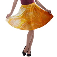Mixed Sacles By Sandi A-line Skater Skirt
