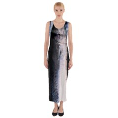Fish Detail By Sandi Fitted Maxi Dress