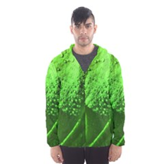Green And Powerful Hooded Wind Breaker (Men)