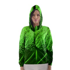 Green And Powerful Hooded Wind Breaker (Women)