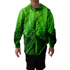 Green And Powerful Hooded Wind Breaker (Kids)