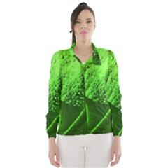 Green And Powerful Wind Breaker (women)