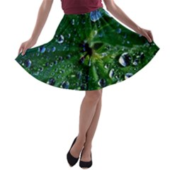 Morning Dew A Line Skater Skirt