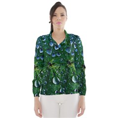 Morning Dew Wind Breaker (women)
