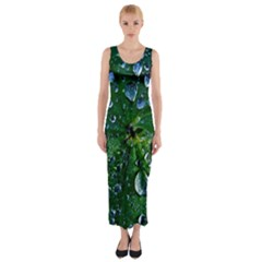 Morning Dew Fitted Maxi Dress