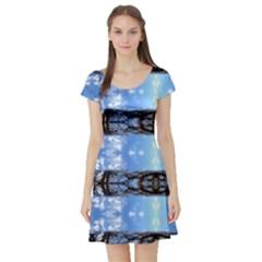 210413017007 Osaka Short Sleeve Skater Dress