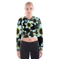 Light Blue Flowers On A Black Background Women s Cropped Sweatshirt
