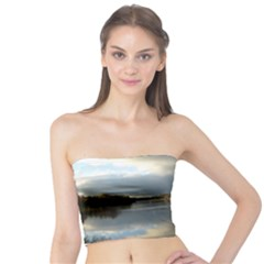 View   On The Lake Tube Top
