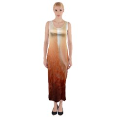 Floating Peach Fitted Maxi Dress