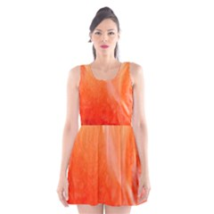 Floating Orange Scoop Neck Skater Dress
