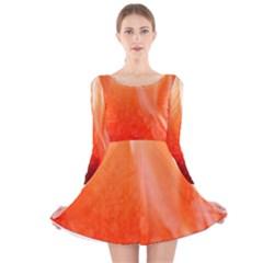 Floating Orange Long Sleeve Velvet Skater Dress