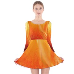 Floating Orange And Yellow Long Sleeve Velvet Skater Dress