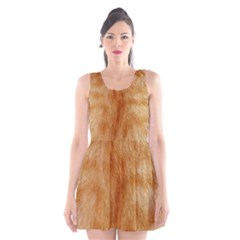 Orange Fur 2 Scoop Neck Skater Dress