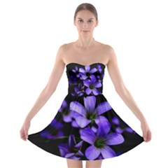 Springtime Flower Design Strapless Dresses