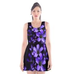 Springtime Flower Design Scoop Neck Skater Dress
