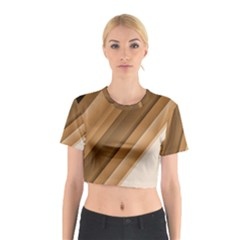 Metallic Brown/neige Stripes Cotton Crop Top