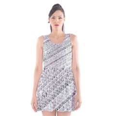 Silver abstract and Stripes Scoop Neck Skater Dress