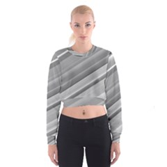 Elegant Silver Metallic Stripe Design Women s Cropped Sweatshirt